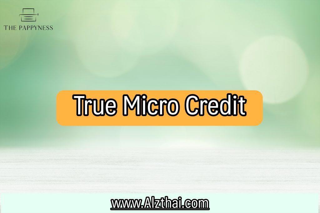 Microloans สินเชื่อ 2564 สมัครไมโครเครดิตออนไลน์
